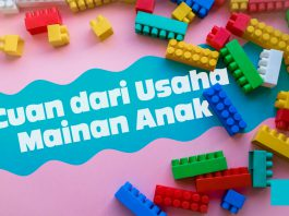 Mendapatkan Penghasilan Tambahan Dari Usaha Mainan Anak